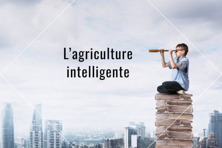l'agriculture intelligente
