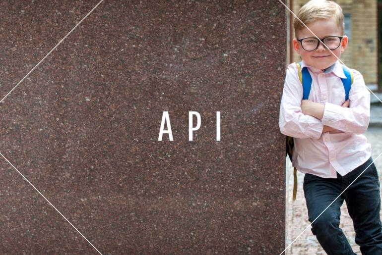 Application-Programming-Interface-API-Definition
