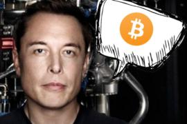 Bitcoin-elon-musk-tesla-2